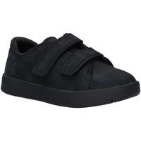 Sapatos Rapaz Sapatilhas Timberland A27WD DAVIS Negro