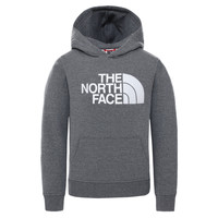 Textil Criança Sweats The North Face DREW PEAK HOODIE Cinza