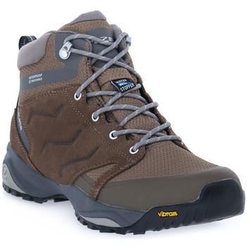 Sapatos Homem Sapatos de caminhada Trezeta CARRIE WP BROWN Marrone