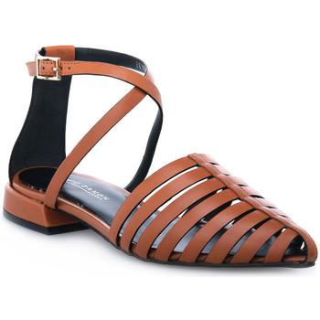 Sapatos Mulher Sandálias Elvio Zanon PARMA CUOIO Marrone
