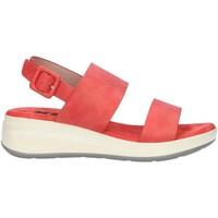 Sapatos Mulher Sandálias Xti 44082 Rojo