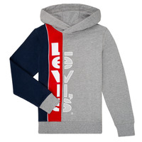 Textil Rapaz Sweats Levi's STRIPED HOOKUP HOODIE Cinza