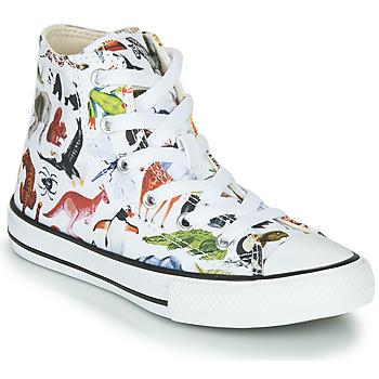 Sapatos Criança Sapatilhas de cano-alto Converse CHUCK TAYLOR ALL STAR - SCIENCE CLASS Branco / Multicolor