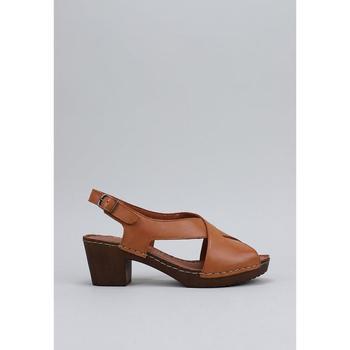 Sapatos Mulher Sandálias Sandra Fontan CRUZADA Castanho