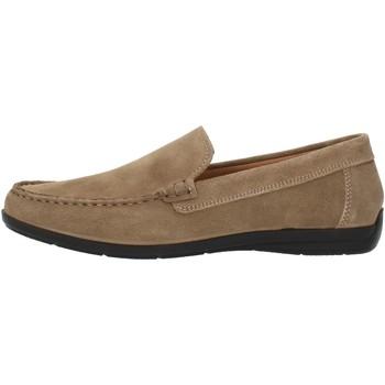Sapatos Homem Mocassins Imac 500711 Bege