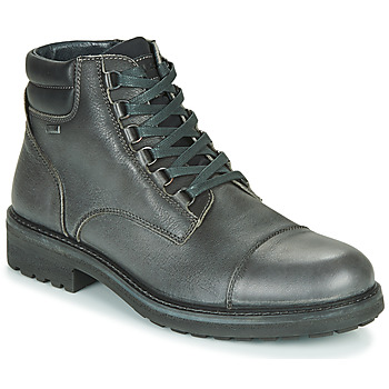 Sapatos Homem Botas baixas IgI&CO UOMO FREDDY GTX Cinza
