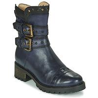Sapatos Mulher Botins Casta MERITA Azul / Preto