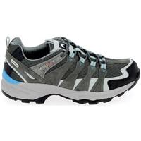 Sapatos Homem Sapatos de caminhada Elementerre Bardenas Gris Bleu Cinza
