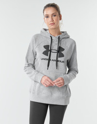 Textil Mulher Sweats Under Armour RIVAL FLEECE LOGO Cinza