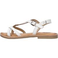 Sapatos Rapaz Sapatos aquáticos Gioseppo - Sandalo bianco BALLY BIANCO