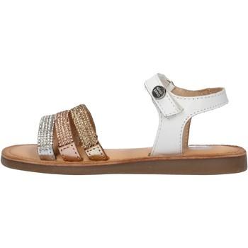Sapatos Rapaz Sapatos aquáticos Gioseppo - Sandalo bianco HIALEAH BIANCO