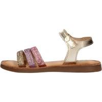 Sapatos Rapaz Sapatos aquáticos Gioseppo - Sandalo oro HIALEAH ORO