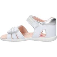 Sapatos Rapaz Sapatos aquáticos Pablosky - Sandalo bianco 073400 BIANCO