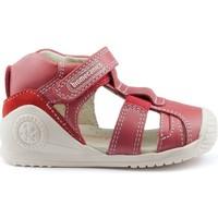 Sapatos Criança Sandálias Biomecanics GIAMO GOMAS LATERALES RED