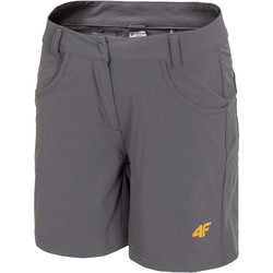 Textil Mulher Shorts / Bermudas 4F Women's Functional Shorts H4L20-SKDF060-23S