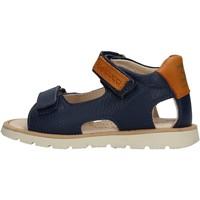 Sapatos Rapaz Sandálias Balducci - Sandalo blu CITA3551 BLU