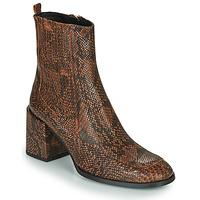 Sapatos Mulher Botins Fericelli NAKE Preto / Castanho