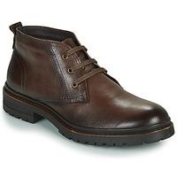 Sapatos Homem Botas baixas Casual Attitude NENDAME Castanho