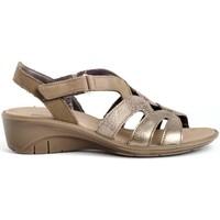 Sapatos Mulher Sandálias Imac 508940 Ouro