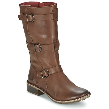 Sapatos Mulher Botas Kickers GROWUP Castanho / Escuro