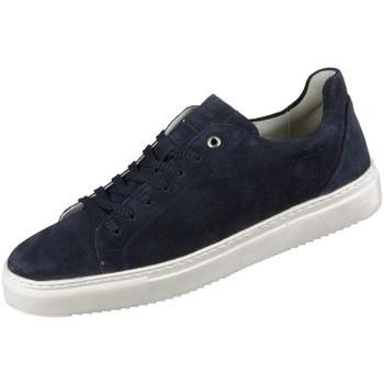 Sapatos Homem Sapatilhas Sioux Tils Azul marinho