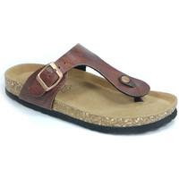Sapatos Mulher Chinelos Bipedes GUTTEN PR1051 BROWN Castanho