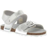 Sapatos Rapariga Sandálias Grunland ARGENTO 40ARIA Grigio