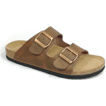Sapatos Chinelos Bipedes GUTTEN PR1060 brown Castanho