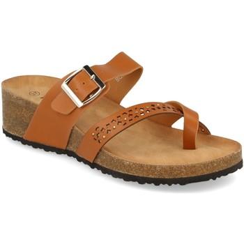 Sapatos Mulher Chinelos Tony.p BQ01 Camel