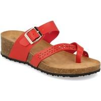 Sapatos Mulher Sandálias Tony.p BQ01 Rojo