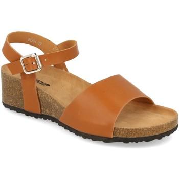 Sapatos Mulher Sandálias Tony.p BQ04 Camel