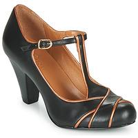 Sapatos Mulher Escarpim Cristofoli MESTIS Preto / Bronze