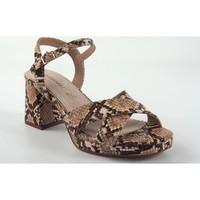 Sapatos Mulher Sandálias Maria Mare 67700 multicolor