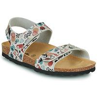 Sapatos Criança Sandálias Citrouille et Compagnie BELLI JOE Bege