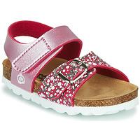 Sapatos Rapariga Sandálias Citrouille et Compagnie MIRTINO Rosa
