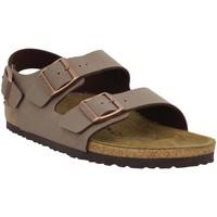 Sapatos Homem Sandálias Birkenstock 131090 Castanho