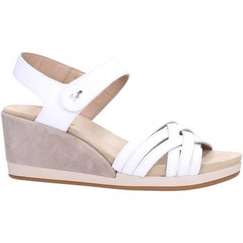 Sapatos Mulher Sandálias Benvado PALMA Multicolore