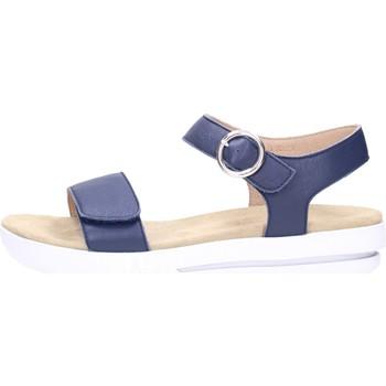 Sapatos Mulher Sandálias Benvado CARLA Multicolore