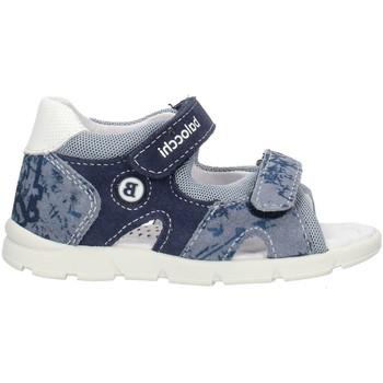 Sapatos Rapaz Sandálias Balocchi 103161 Azul