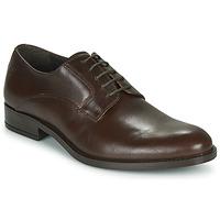 Sapatos Homem Sapatos Carlington NOCOLA Castanho