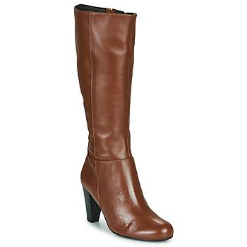 Sapatos Mulher Botas So Size ARDEIN Castanho