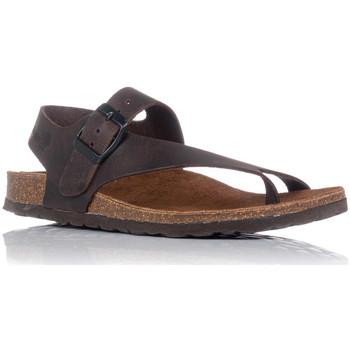 Sapatos Mulher Sandálias Interbios 7162 Castanho