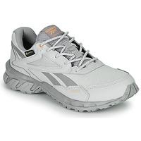 Sapatos Sapatilhas Reebok Classic RIDGERIDER 5 GTX Cinza