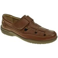Sapatos Homem Sandálias Luisetti 19501 Marrón