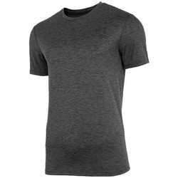 Textil Homem T-Shirt mangas curtas 4F TSMF003 Grafite