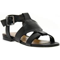 Sapatos Mulher Sandálias Priv Lab HARLEY NERO Nero