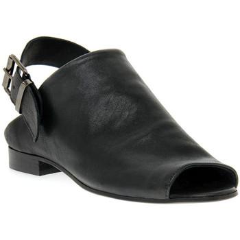 Sapatos Mulher Sandálias Priv Lab RENATA NERO Nero