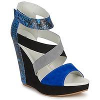 Sapatos Mulher Sandálias Serafini CARRY Preto / Azul / Cinza