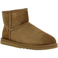 Sapatos Mulher Botins UGG 55046 Bege