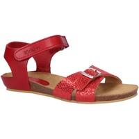 Sapatos Rapariga Sandálias Kickers 784640-30 BOBBUN Rojo